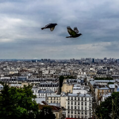 Montmartre Walking Tour (The Wayward Post)